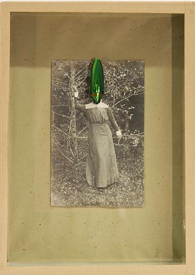Vincent Chevillon - Les Bacchantes - 2016 - en cours Carte postale, coléoptère, épingle, boîte entomologique, 25 x 18 cm